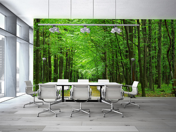 室内装修多姿多彩,快捷环保更健康